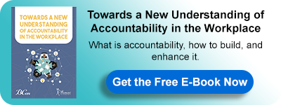 E-Book: Towards a New Understanding of Accountability in the Workplace